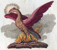 330px-Phoenix-Fabelwesen